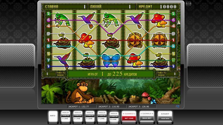 игры crazy monkey studios